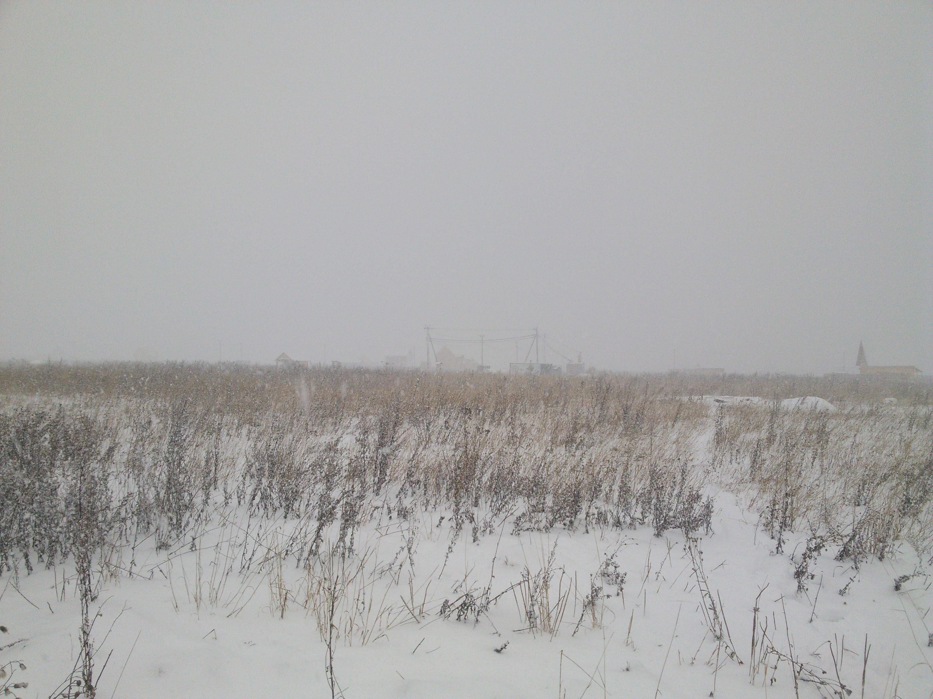Зима пришла, зиме дорогу!